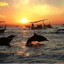 If  you are an animal lover, especially the dolphin  tourist sites not to miss this one.  Located in North Bali on the north coast of Bali, exactly about 10 km west of Singaraja in the village of Kalibukbuk, Buleleng,  Bali, a beach called Lovina beach will give you the adventure with the dolphins.  The distance that the approximately  100 km from Denpasar or 3 hours away.