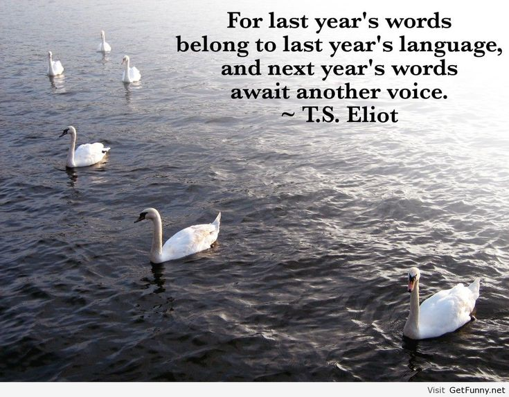 Happy New Year 2019 Motivational Quotes   andttk