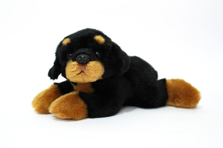 CUDDLY CRITTERS SOFT PLUSH ROTTWEILER RAMSEY I COOL CAT COLLECTABLES