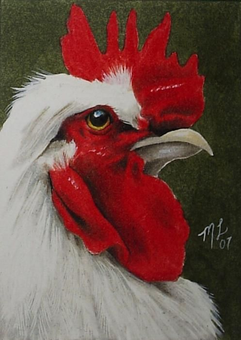 'Rooster'   by Melody Lea Lamb