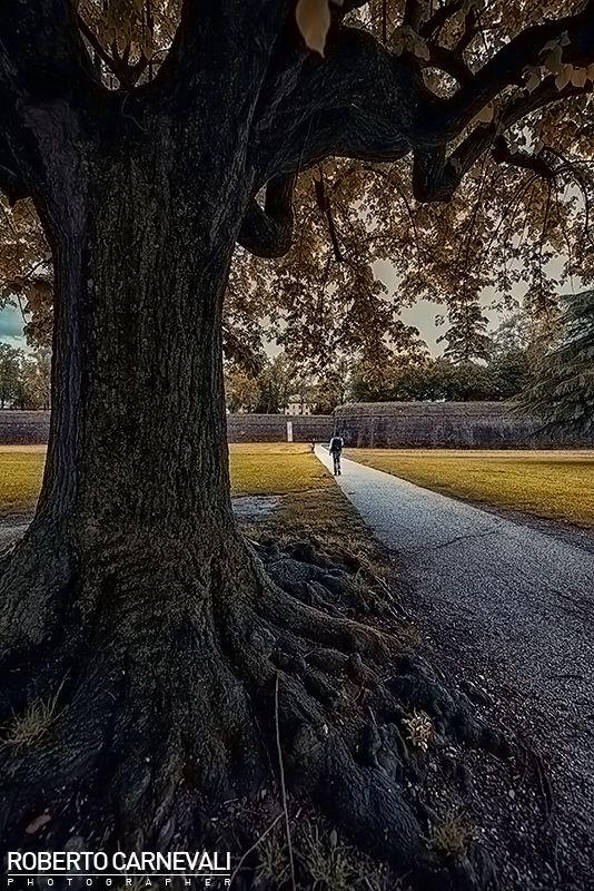 """""""Goodbye"""" - (Addio)  Una fotografia per riflettere sul significato della parola Addio, che vi invito ad approfondire sul mio sito.  Lucca - Italy (03/05/2014)  © Roberto Carnevali"""
