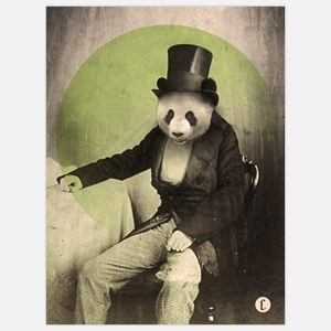 Proper Panda 16x24 now featured on Fab.
