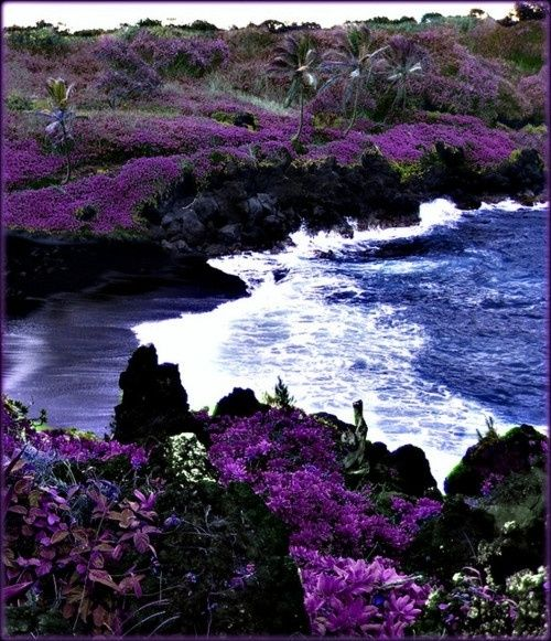 black beach hawaii | Black Sand Beach, Maui, Hawaii, USA | Purple Stuff 7
