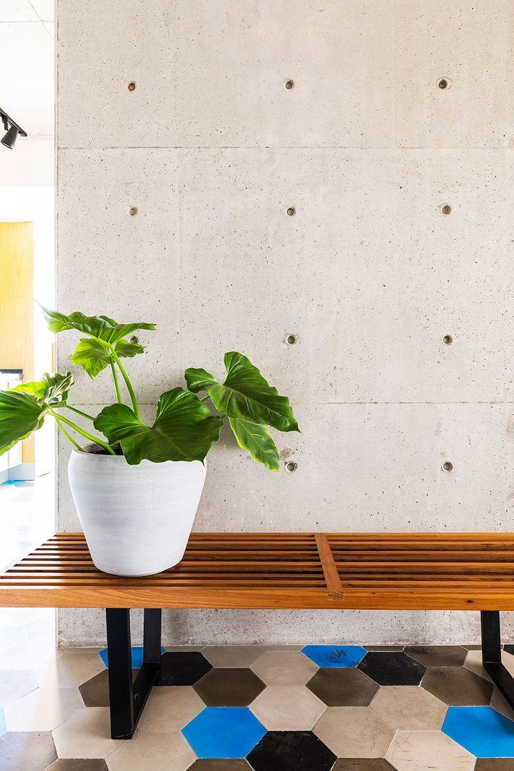 Decoração de apartamento, decoração de apartamento pequeno, decoração descolada, banco de madeira, vaso de planta, vaso grande.