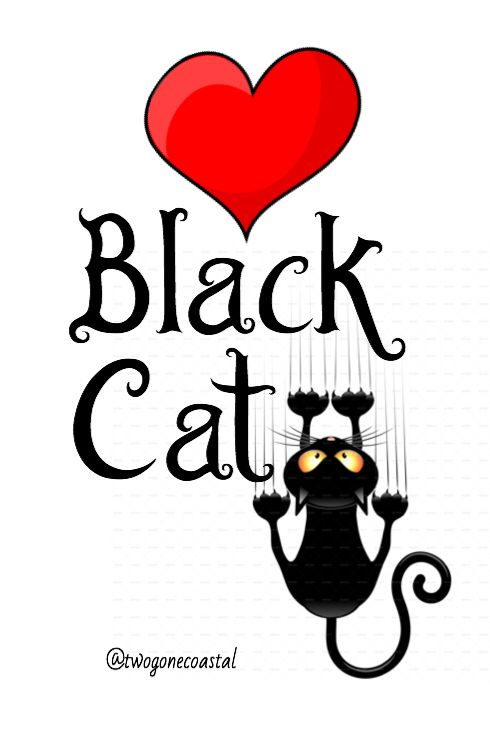 Love back cats! ♥