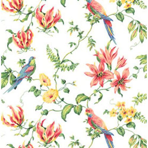 tropical bird wallpaper for walls - photo #29