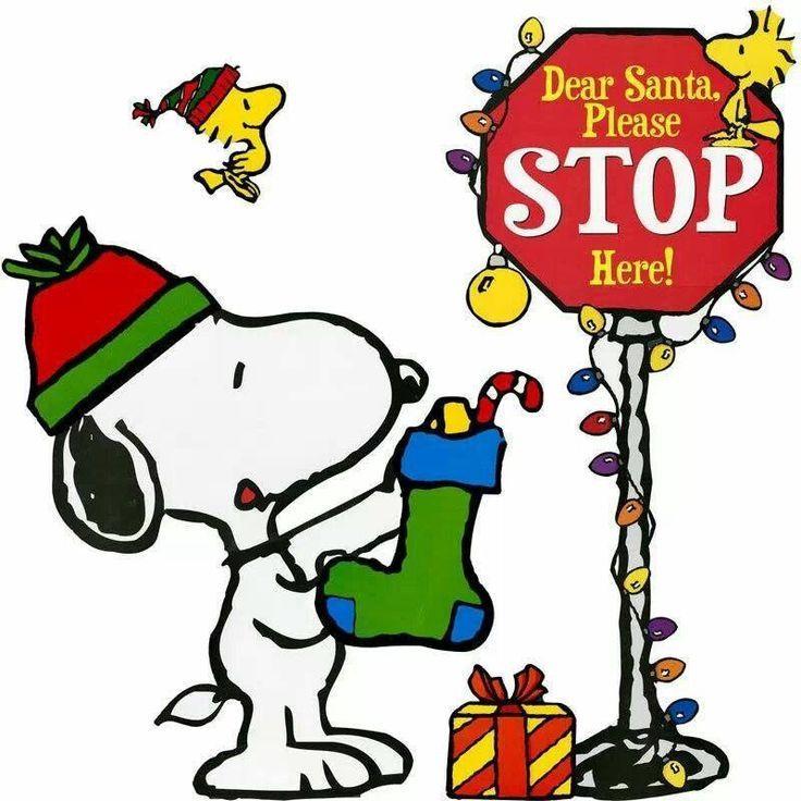 Dear Santa, Please stop here!