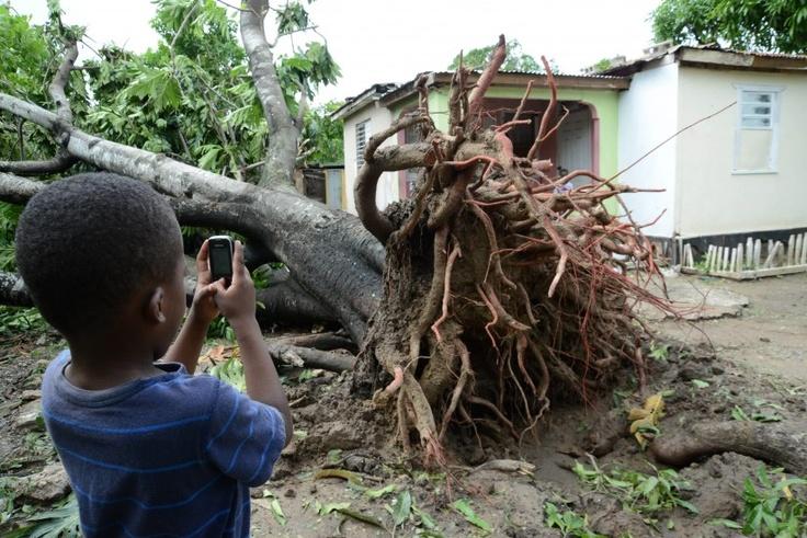 Un niño toma una fotografía a un árbol que cayó debido a los fuertes vientos del huracán Sandy, detrás de su casa en el parque Gregory de la localidad de St. Catherine (Jamaica), donde se ha decretado el cierre de escuelas, negocios y aeropuertos, además de establecerse toques de queda en algunas zonas de la isla.