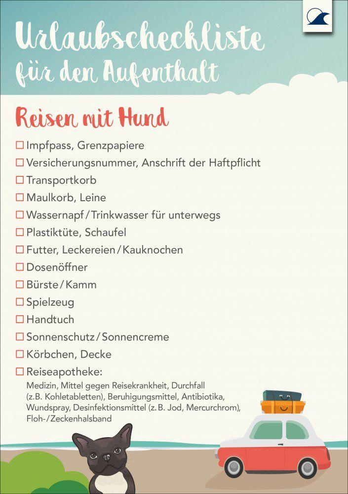 Tierische Packliste Fur Reisen Mit Hund Ostsee Ferienwohnung