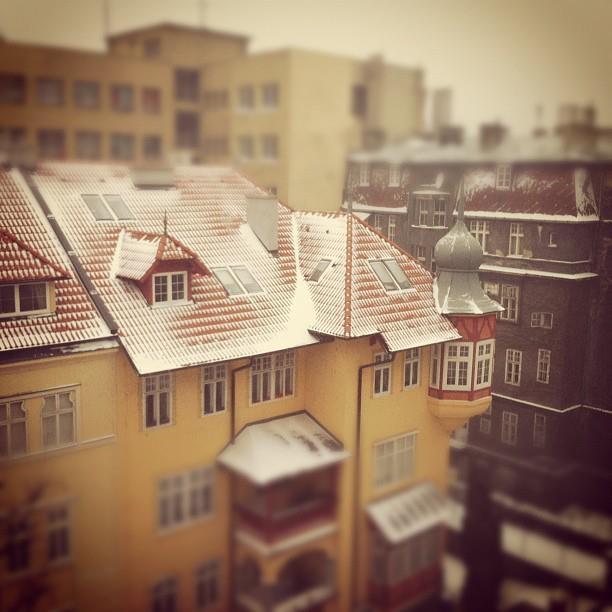 Winter morning; by Peter Sedlacik