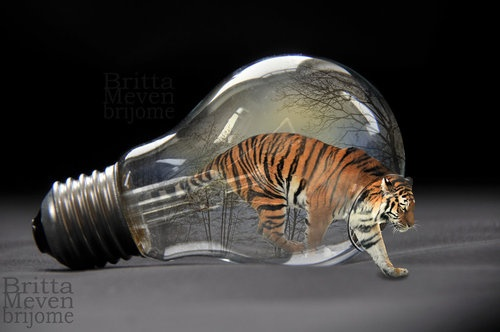Tiger in the light bulb by *brijome.