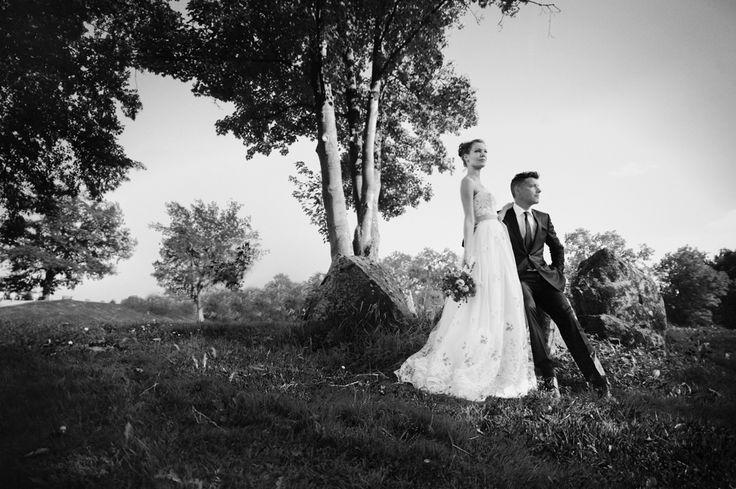 Heidefotograf Steffen Böttcher | Hochzeitsfotograf » kreativer Hochzeitsjournalismus, Hochzeitsreportagen, Hochzeitsbilder