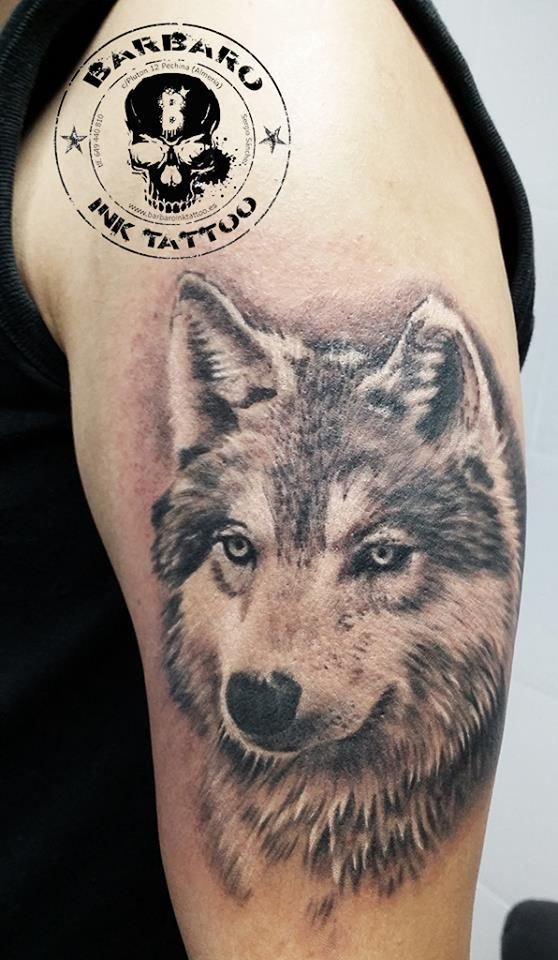 #tattoo #tattooist #tattooed #bestspaintattooartist #blackandgreytattoo #wolftattoo