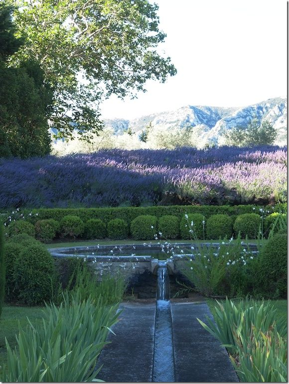 Beautiful garden. Vicki Archer's property in France, water rill surrounded by lavender, Cote de Texas