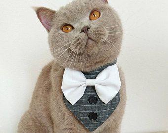 Dog Tuxedo Dog Wedding Suit Dog Formal Wear Pet Vest for