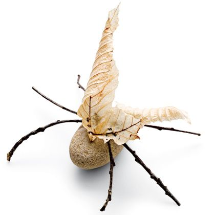 Rock Bugs-- i love these -- so cute and the perfect project for little boys and my sweet nature girl, Ava!!