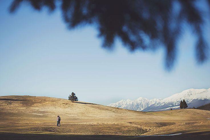 servizio fotografico bosco del cansiglio #engagement sessionefotografica #fotografo