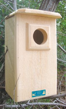 SCREECH OR SAW-WHET OWL HOUSE.