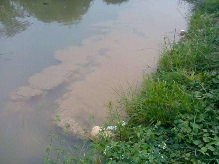 Pencemaran Lingkungan ~ LSM KOREK DISTRIK BEKASI