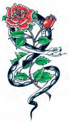 Snake & Roses Tattoo