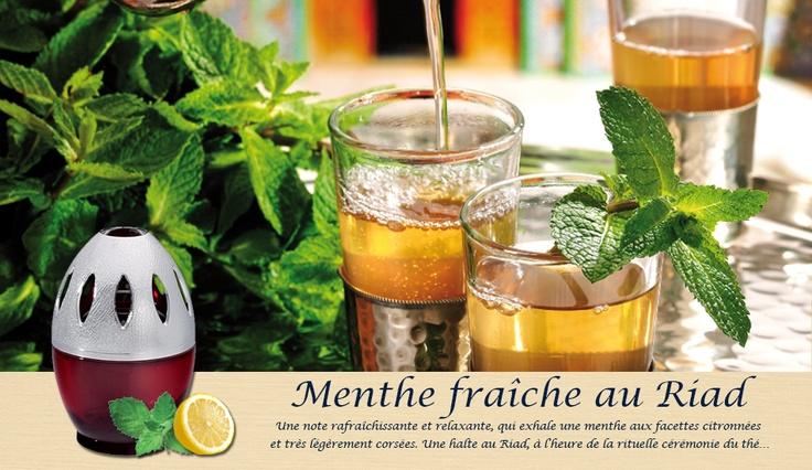 Parfum de Maison, Menthe Fraîche au Riad. Faites une halte au coeur d'un Riad marocain.  Un parfum rafraichissant et désaltérant.