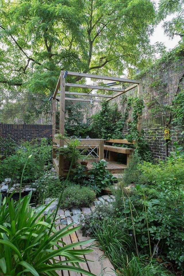 272 best images about plants on pinterest gardens for English courtyard garden design
