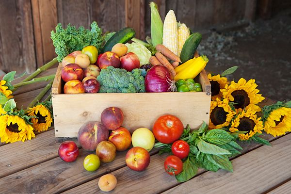 7 Farm-Fresh Food Delivery Services That Make Healthy Living Easy #Refinery29