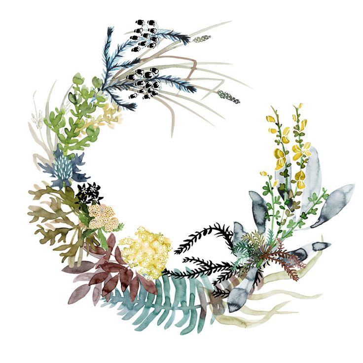 wreaths - katie vernon art + illustration