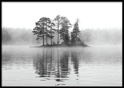 Plansch / affisch med svartvitt fotografi av vacker natur. Tavla med svartvitt naturfoto i storleken 50x70cm.