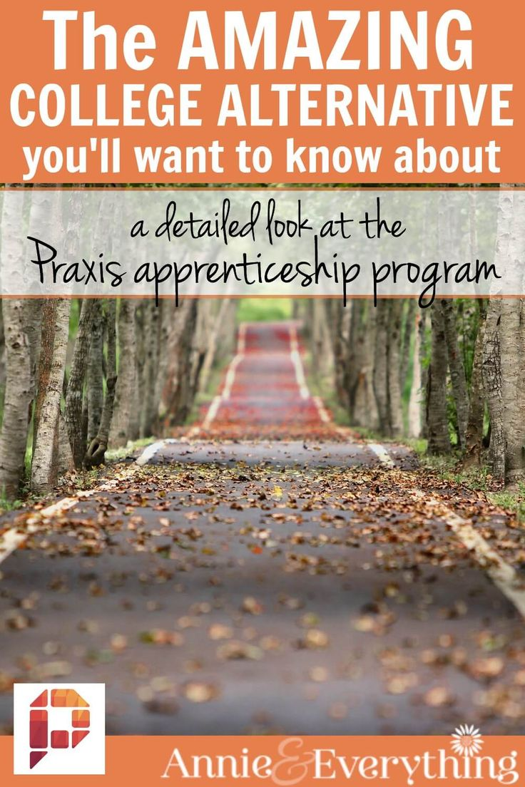 17 best images about homeschool high school the amazing college alternative you ll want to know about a detailed look at the praxis apprenticeship program