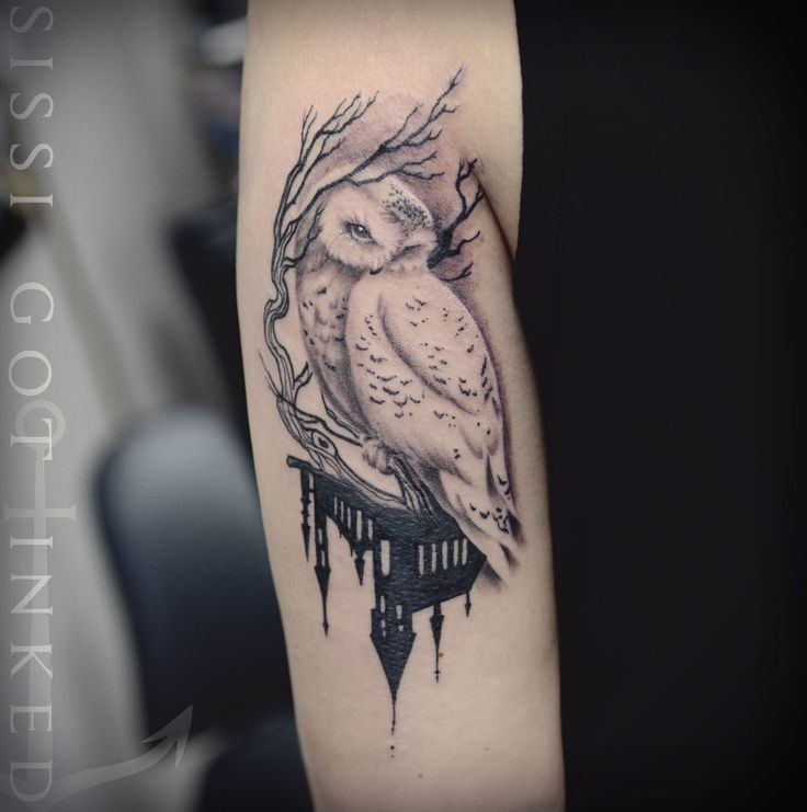25 best ideas about hedwig tattoo on pinterest hedwig owl small owl tattoos and harry potter art. Black Bedroom Furniture Sets. Home Design Ideas