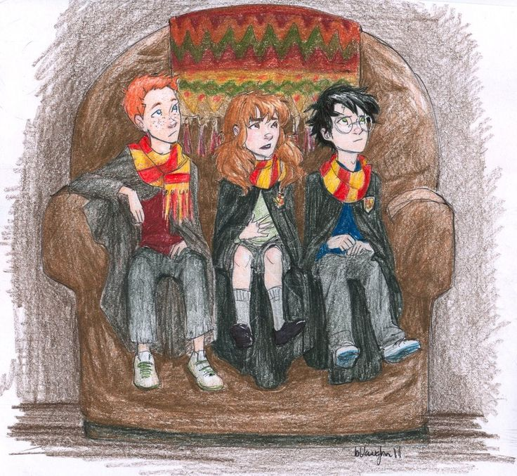 Ron, Hermoine and Harry :)