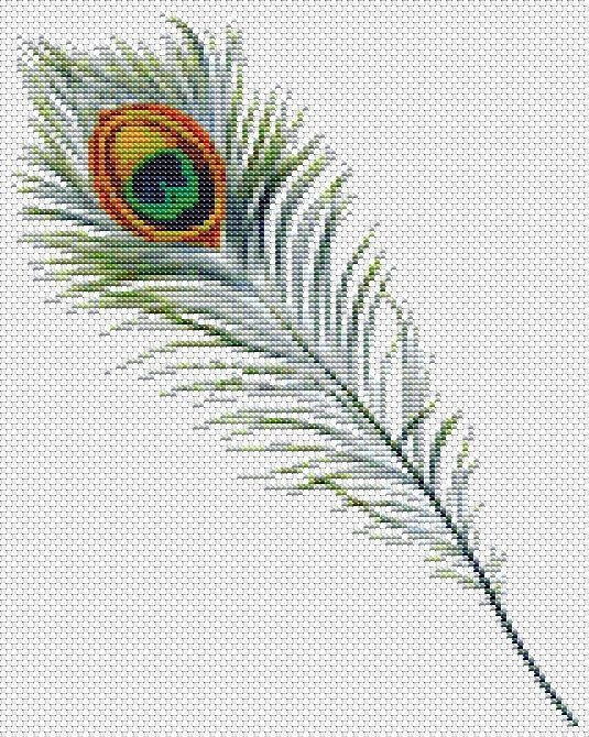 Peacock Feather Cross Stitch Pattern. Instant PDF Download.