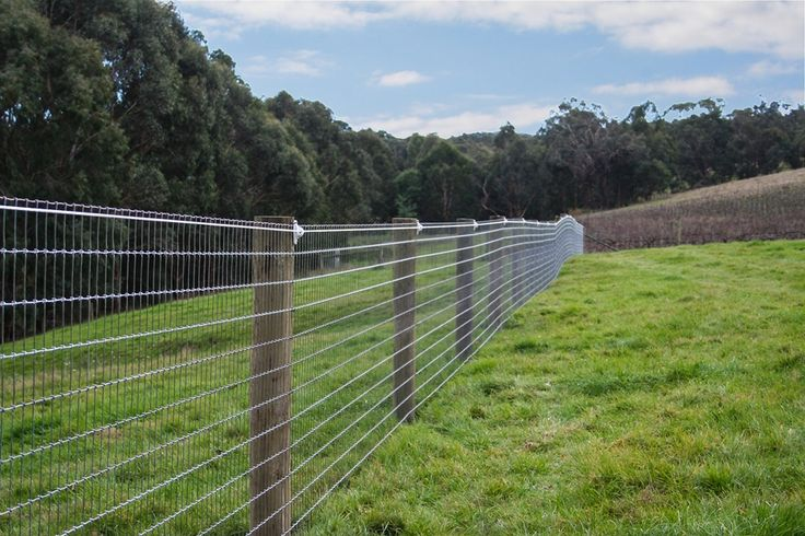 Cheap Goat Fencing | ... MESH - the ideal general purpose fence for horses and other stock