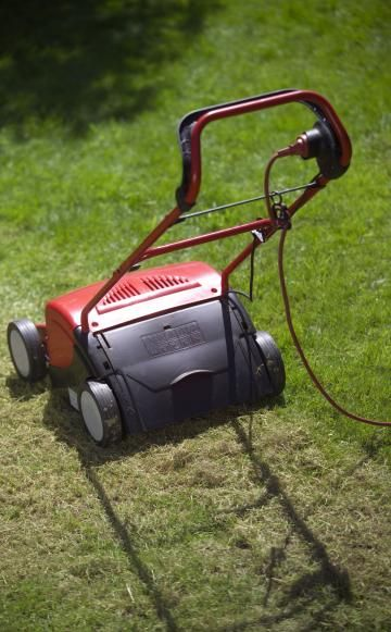 Wenn Ihr Rasen braune Flecken zeigt, stecken häufig die Larven der Wiesenschnake (Tipula) dahinter. Mit einer Kombination verschiedener Bekämpfungsmethoden können Sie die Rasenschädlinge auf ein erträgliches Maß reduzieren