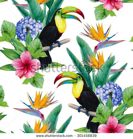 Hand-drawn watercolor illustration. Seamless pattern. Rainbow Toucan bird and exotic flowers. Yucca palm, Hibiscus, Blue Cape Plumbago, Strelitzia. Painted with a brush on paper image. - stock photo