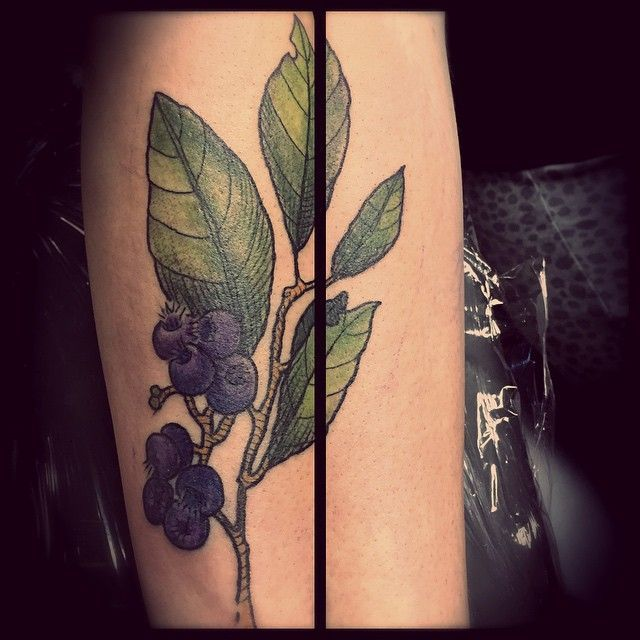 10 best blueberry tattoo designs images on pinterest tattoo ideas design tattoos and tattoo. Black Bedroom Furniture Sets. Home Design Ideas