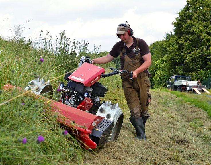 Mulchen mit einem Köppl Mäher Mulchen, Gartentechnik, Gras