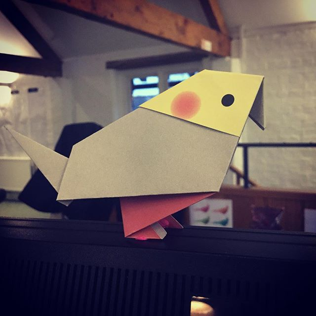 Origami Cockatiel #origami #cockatiel #birdsofinstagram  #birdartben