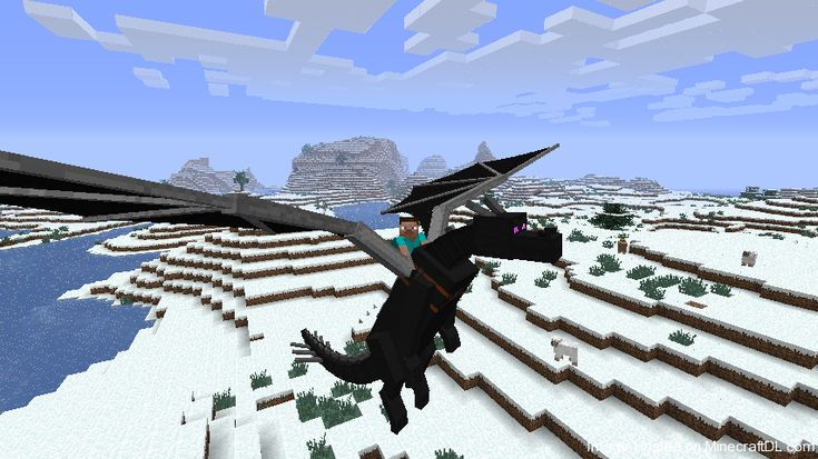 how to kill the ender dragon when you summon it