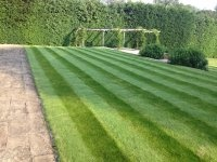 Greenfellas Gardening Services North London. We provide garden services and landscaping services. For all your garden landscaping needs call us today.