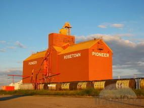 3. Saskatchewan - 'Grain, Cows And Wheat' Slideshow