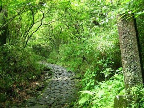 箱根旧街道の石畳を「わらじ」でウオーキング-昔の旅を体感 http://eco.fmyokohama.co.jp/news/24332