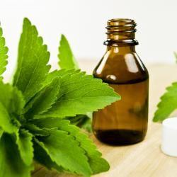 Blätter der Stevia Pflanze sowie in flüssiger Form in einer Flasche