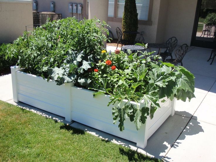 91 best images about Raised Garden/Border Ideas on ...