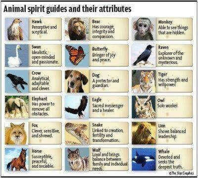 Animal spirit guides & their attributes..
