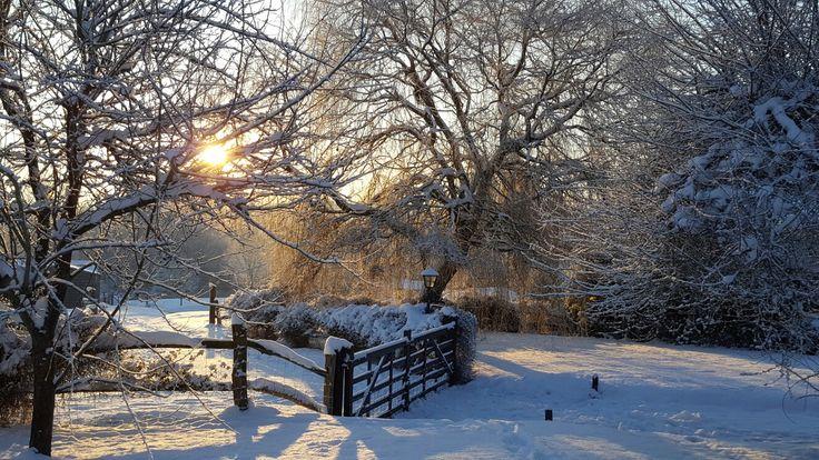 Snowy entrance to the flower farm.