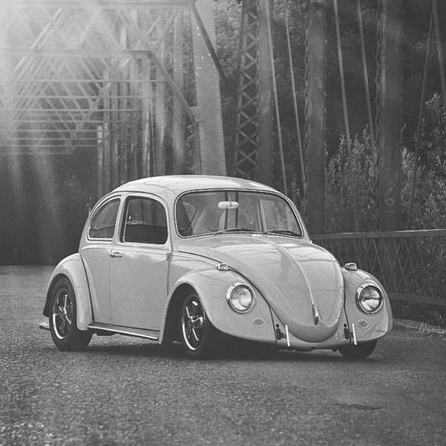 Drag Race Cars, Volkswagen Beetles, Vw Bugs, Custom Cars, Sedans, Type 1,  Classic Cars, Porsche, Mens Fashion