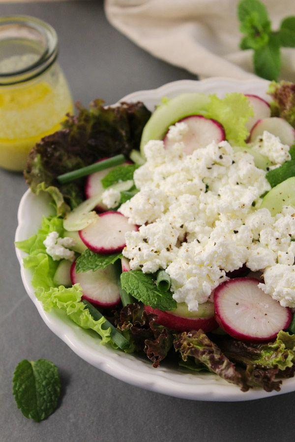 Salada de rabanete, pepino e queijo cottage