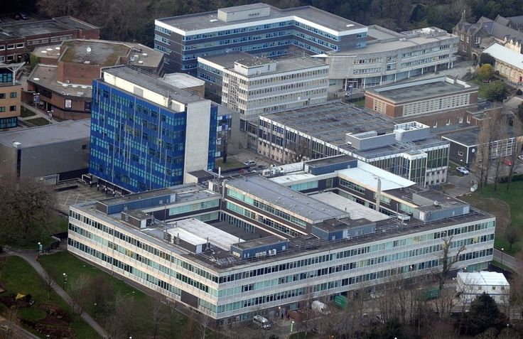 Swansea University Excels in New Global Subject Rankings